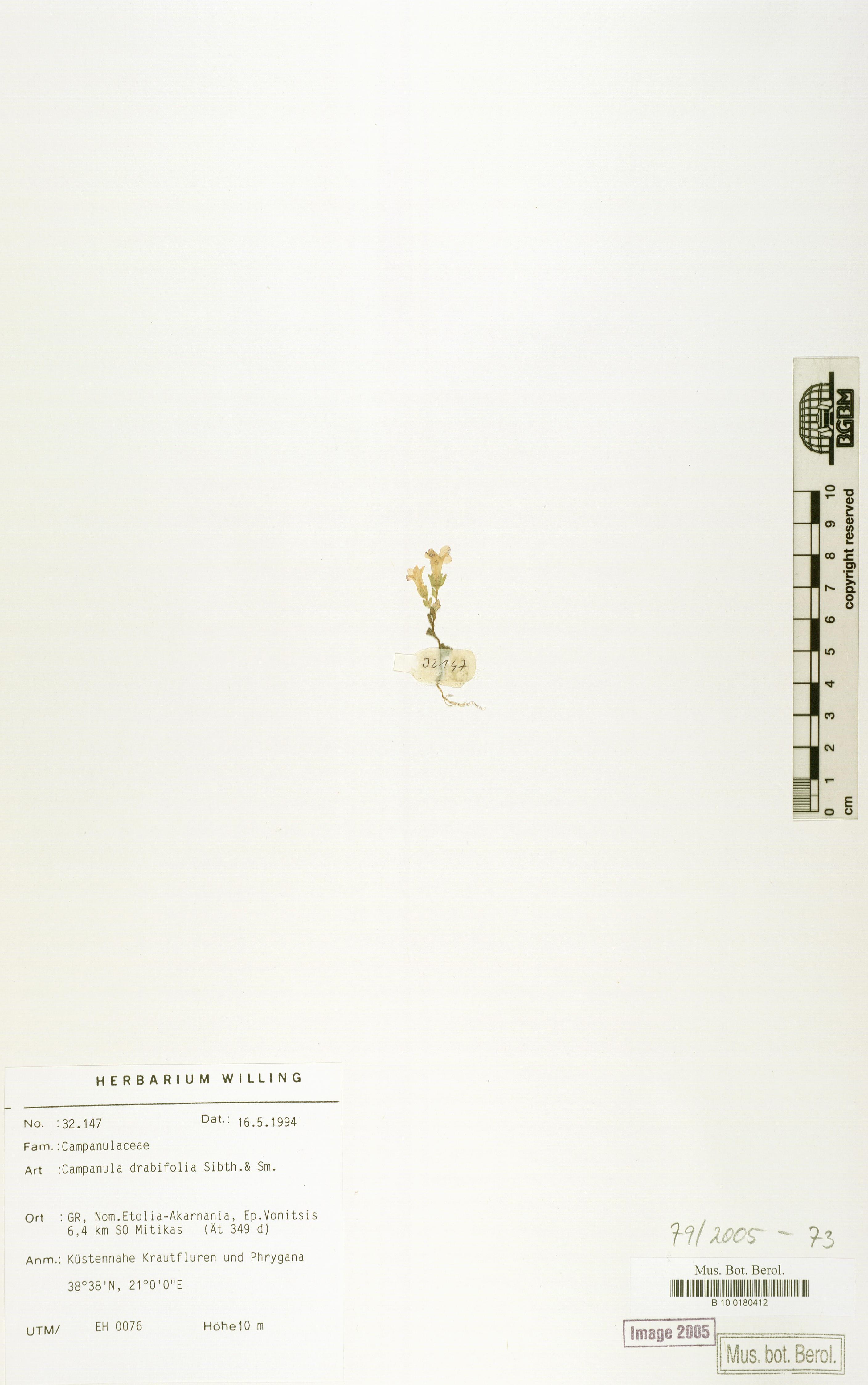 http://ww2.bgbm.org/herbarium/images/B/10/01/80/41/B_10_0180412.jpg