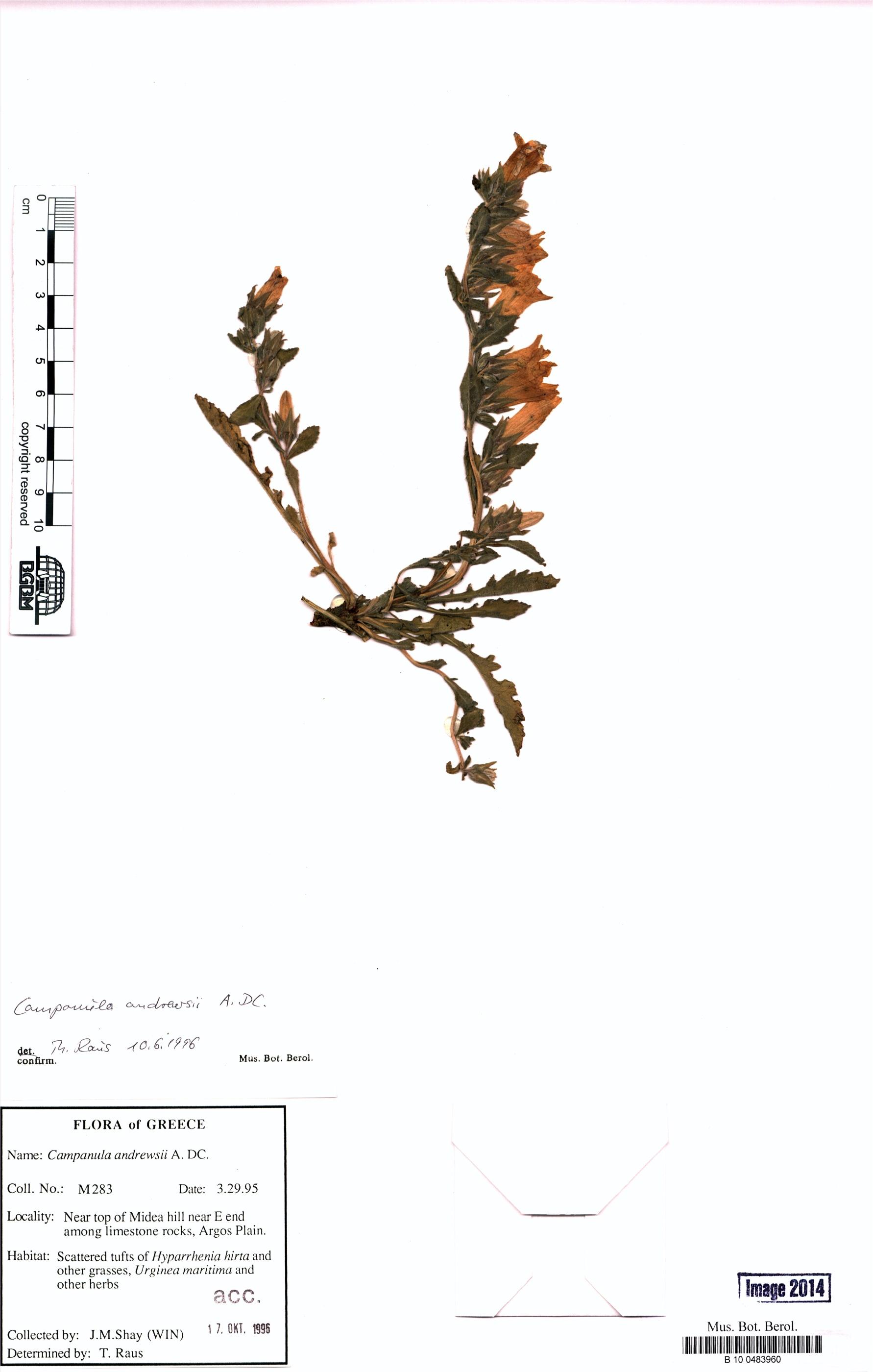 http://ww2.bgbm.org/herbarium/images/B/10/04/83/96/B_10_0483960.jpg